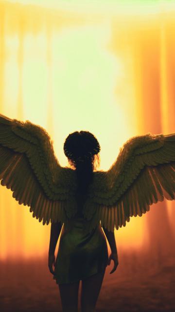 翼を広げた天使の画像